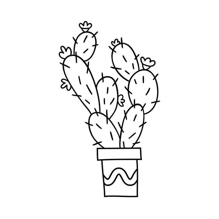 Pochoir vitrine Plantes