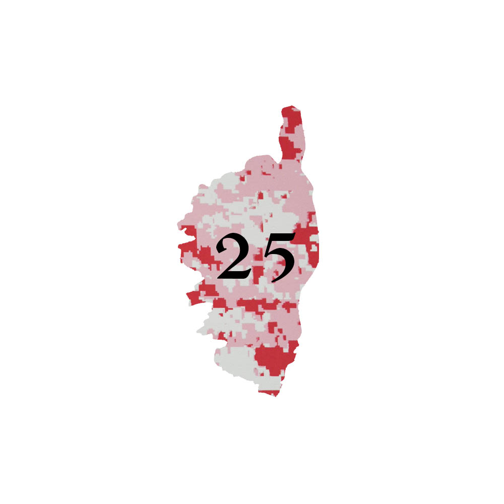 Numéro fantaisie personnalisable pour boite aux lettres couleur Camo Rose chiffres noirs - Modèle région Corse