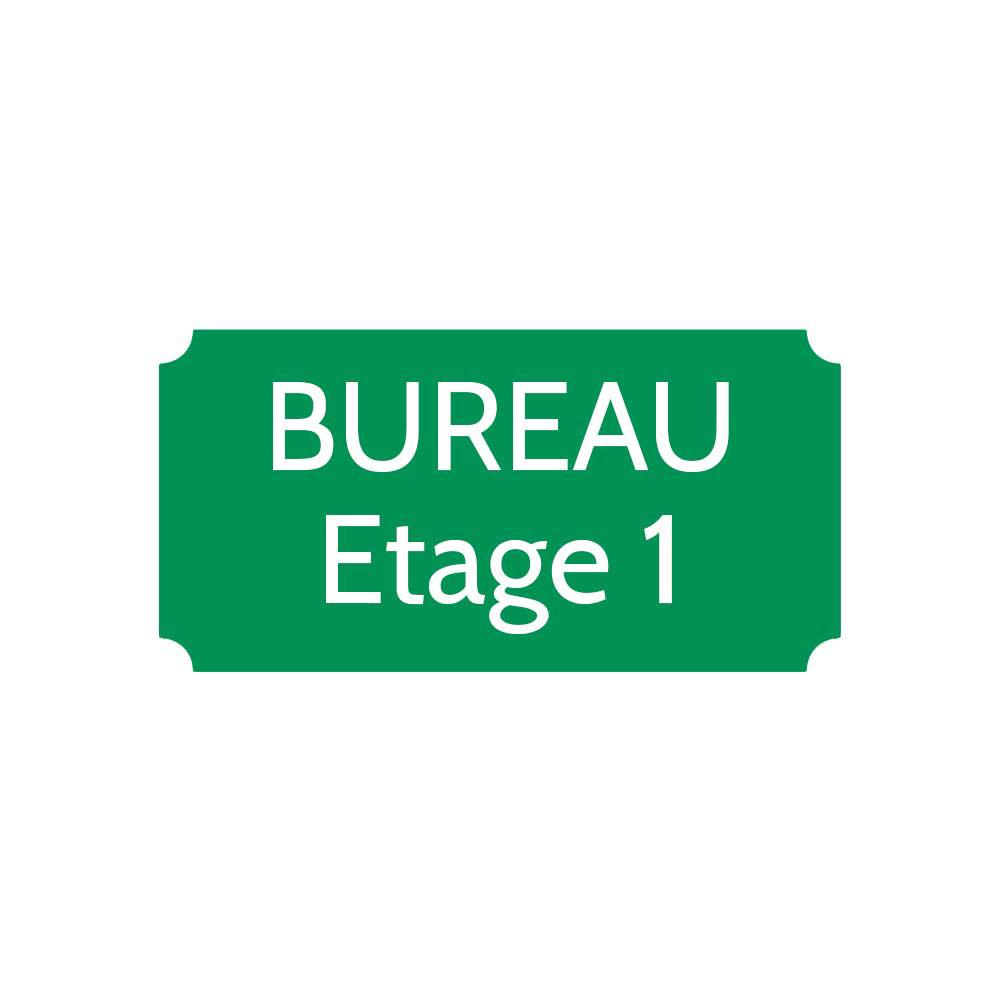 Plaque de porte gravée sur 1 à 2 lignes couleur vert clair lettres blanches - Rectangle classique 100 x 200 mm