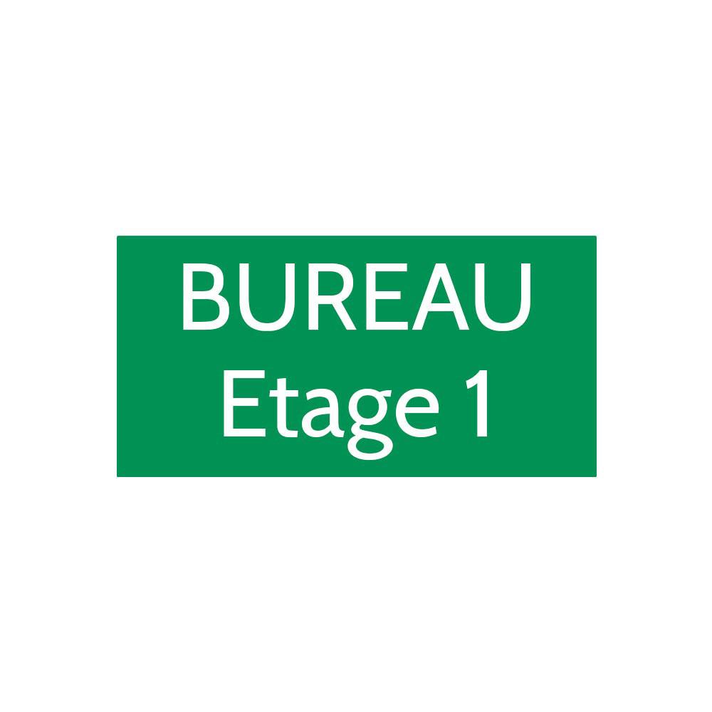 Plaque de porte gravée sur 1 à 2 lignes couleur vert clair lettres blanches - Format rectangle 100 x 200 mm